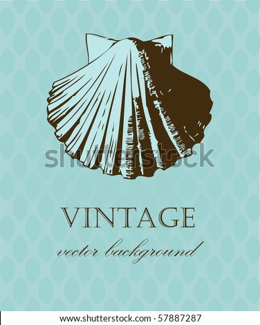 Vintage card with hand  drawn  shell - stock vector