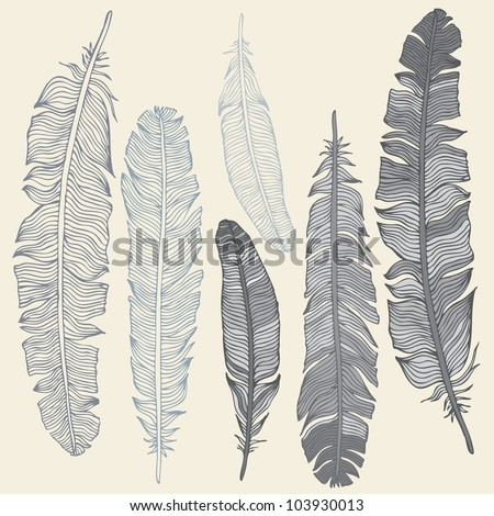 Vintage Feather vector set. Hand-drawn illustration. - stock vector