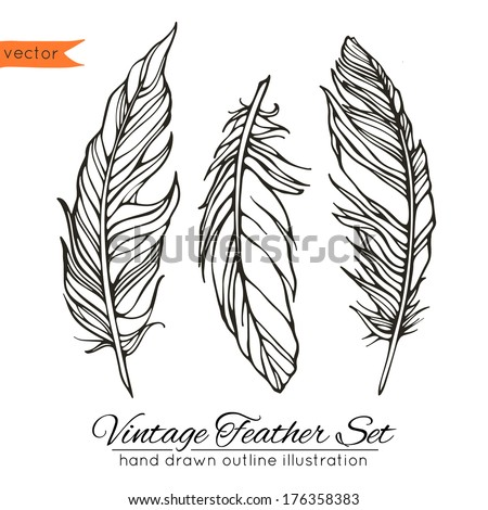 Vintage feathers set isolated on white background. Hand drawn vector illustration. Template for your design - stock vector