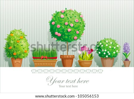Vintage greeting card with the pot plants collection - stock vector