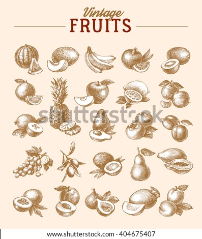 Vintage hand drawn sketch fruits set. Eco foods.Vector illustration - stock vector