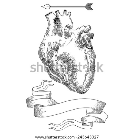 Vintage illustrations with Human heart for Valentine's Day. - stock vector