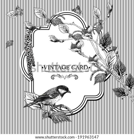 Vintage Monochrome Background with birch branches and bird tit. Vector illustration - stock vector