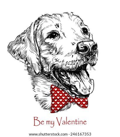 Vintage retro hipster style sketch of funny Labrador dog. vector illustration. - stock vector