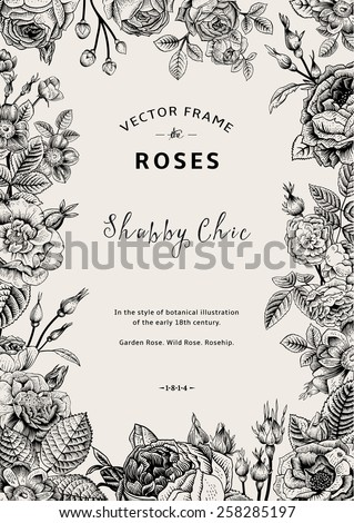 Vintage vector frame. Garden and wild roses. In the style of an old botanical illustration. Black and White. - stock vector