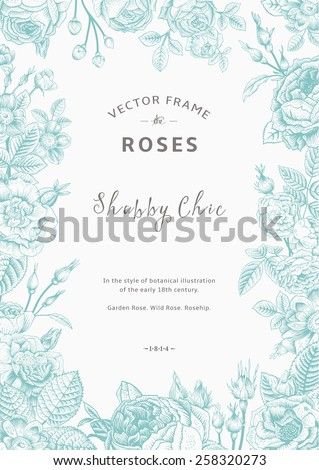 Vintage vector frame. Garden and wild roses. In the style of an old botanical illustration. Mint and gray color. - stock vector