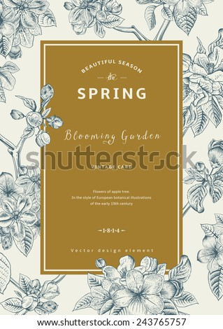 Vintage vertical spring card. Branch of apple tree blossoms.  - stock vector