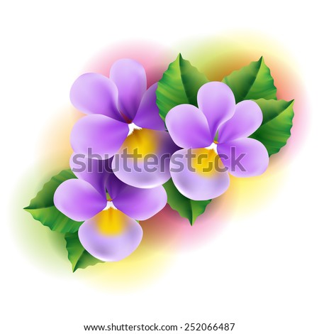 Violet flowers - stock vector
