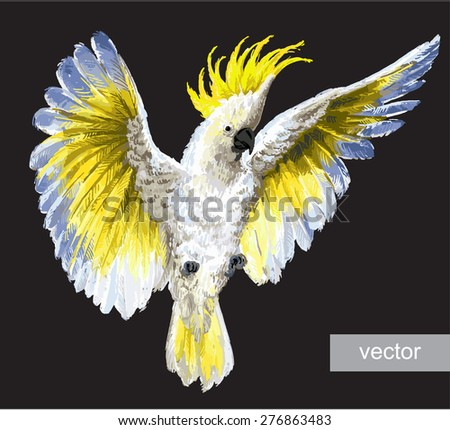 Vrested Cockatoo. Vector isolated on black. - stock vector