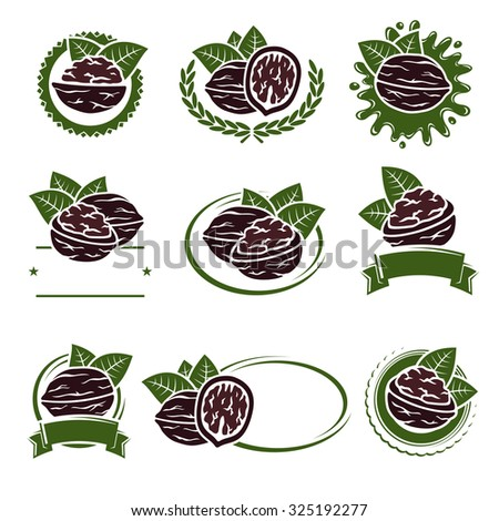 Walnut nuts labels and elements set. Vector - stock vector