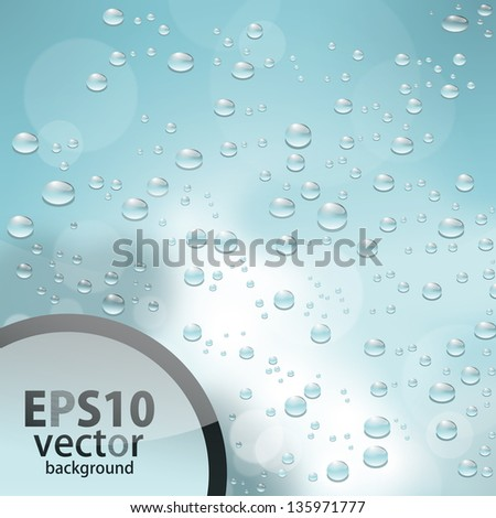 water drops - stock vector