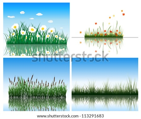 Water flora background set. Four images. Vector illustration. - stock vector
