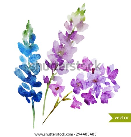 watercolor abstract lilac flowers, bouquet, isolated object - stock vector