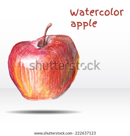 Watercolor apple isolated on white background. Vector illustration - stock vector