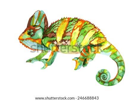Watercolor chameleon illustration - stock vector