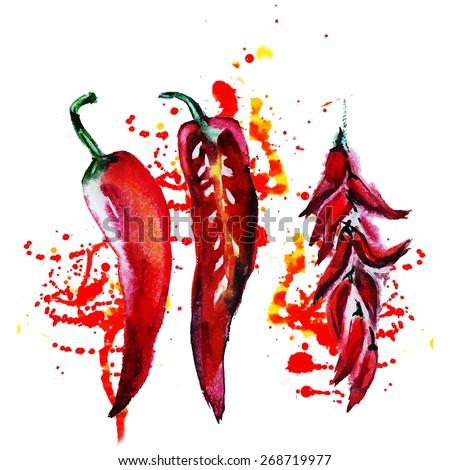 watercolor chili pepper - stock vector