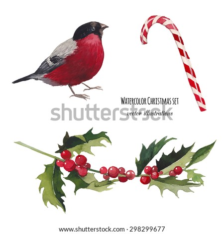 Watercolor Christmas set. Hand drawn bullfinch bird, striped candy and mistletoe branch isolated on white background. Vintage vector objects collection for holiday design - stock vector