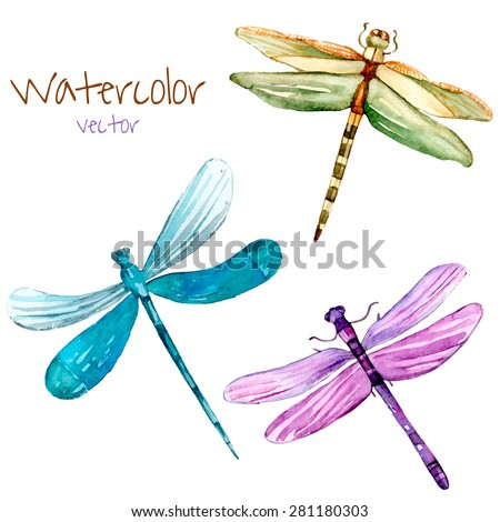 Watercolor dragonfly set. Vector isolated art insects in vector. - stock vector