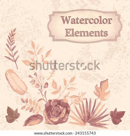 watercolor floral elements set - illustration - stock vector