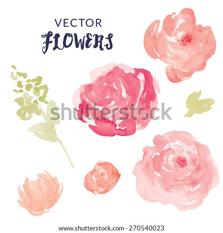 Watercolor Flower Vector With Blooms and Leaves. Pink Vector Watercolor Peonies and Watercolor Leaves - stock vector