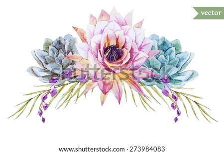 watercolor flowers element   succulents - stock vector