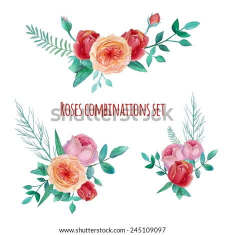 Watercolor garden roses combinations. Set of floral posies with english roses, plants and  branches. Vector hand drawn illustration - stock vector