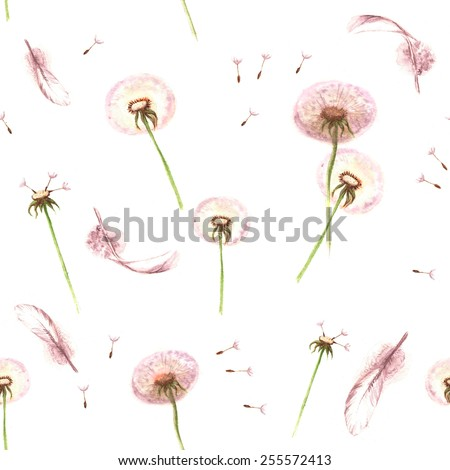 Watercolor hand drawn seamless pattern with feathers and spring tender flowers - dandelions on the white background - stock vector