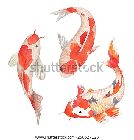 Watercolor oriental rainbow carp set. Isolated hand drawn fishes. Underwater wildlife illustration in vector - stock vector