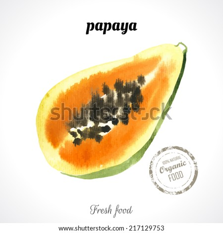 Watercolor  papaya. Provencal style. Recent watercolor paintings of organic food. Fresh exotic fruit. - stock vector
