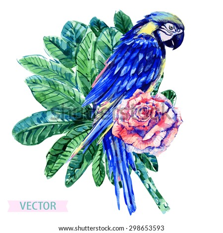 Watercolor parrot, flower and tropical jungle palm leaves, rose, tree. Beautiful vector floral illustration isolated on white background, hand painted, exotic print - stock vector