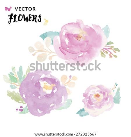 Watercolor Peonies. Vector Watercolor Flowers. Painted Vector Flowers - stock vector