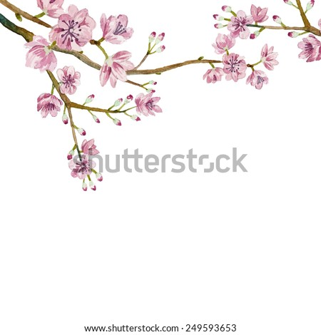 Watercolor sakura frame. Background with blossom cherry tree branches. Hand drawn japanese flowers on white background. Vector illustration - stock vector