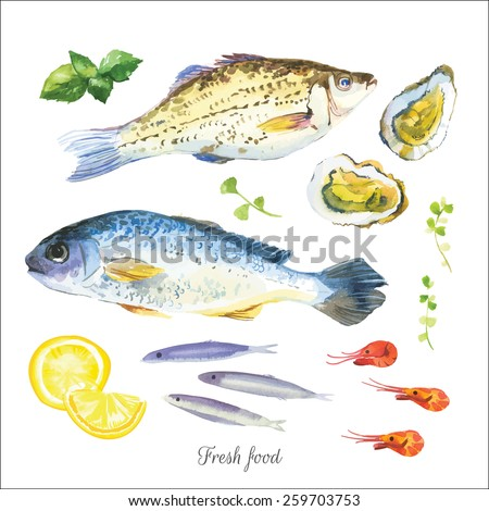 Watercolor set with fish, seafood, oysters, basil and other herbs and spices. Hand-drawn on a white background. Simple painting sketch in vector format. - stock vector