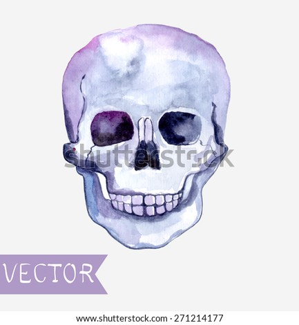 Watercolor skull background, beautiful illustration, Vector - stock vector