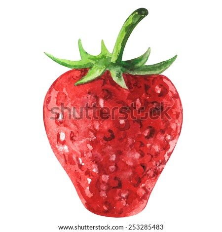 Watercolor strawberry with leafs closeup isolated on white background - stock vector