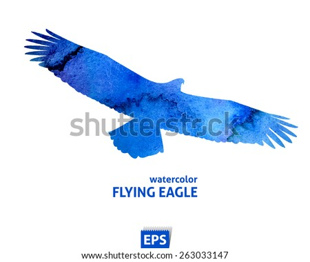 Watercolor template of flying blue big eagle - stock vector