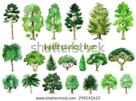 Watercolor trees collection - stock vector