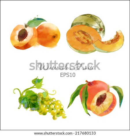 Watercolor vector fruits set of melon, grape, apricot and peach - stock vector