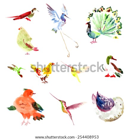 Watercolor vector hand drawn bird isolated on white background. Duck, peacock, stork, hen, humming bird, sparrow character. - stock vector