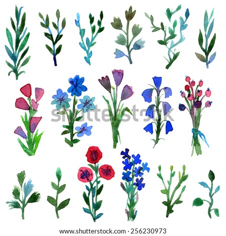 Watercolor vector set with leaves and flowers. Hand drawn plant. Spring or summer design for invitation and greeting cards. - stock vector