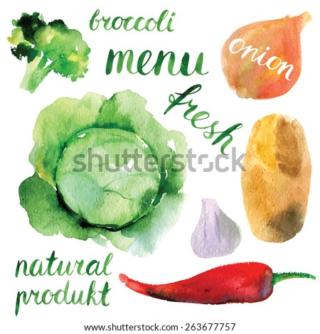 watercolor vector vegetables set  - stock vector