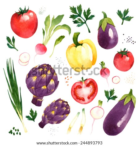 Watercolor vector vegetables set with tomato, radish, artichoke, eggplant, pepper, onion, parsley - stock vector