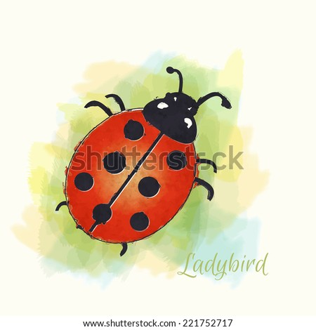 Watercolour illustration of a ladybird. EPS10 vector format. - stock vector
