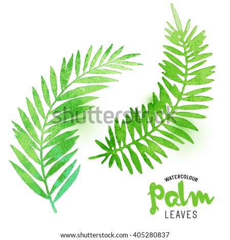 Watercolour Palm Leaves. Vector watercolour effect palm leaves. Vector illustration. - stock vector