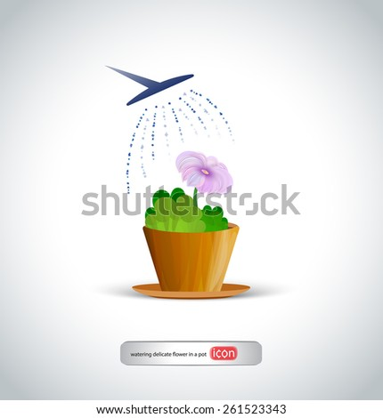 watering delicate flower in a pot - stock vector