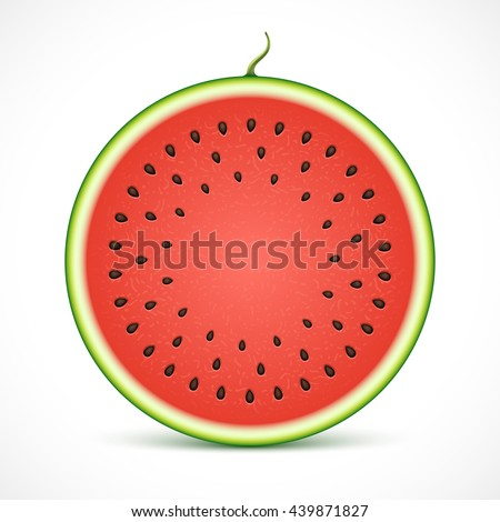 Watermelon slice isolated on white background.  - stock vector