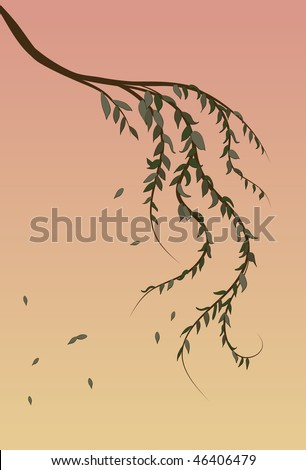 Weeping Willow tree branch background - stock vector