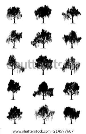 Weeping willows - stock vector