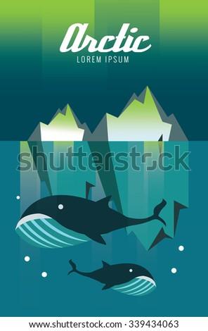 Whale and iceberg. Arctic Aurora nature. flat design elements. vector illustration - stock vector