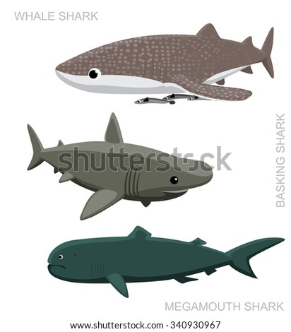 Whale Shark Set Cartoon Vector Illustration - stock vector